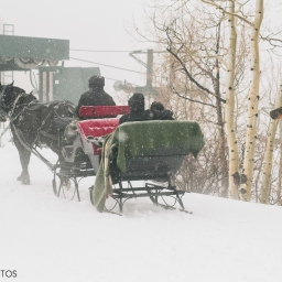 snowy sleigh ride perfection – stein erikson proposal