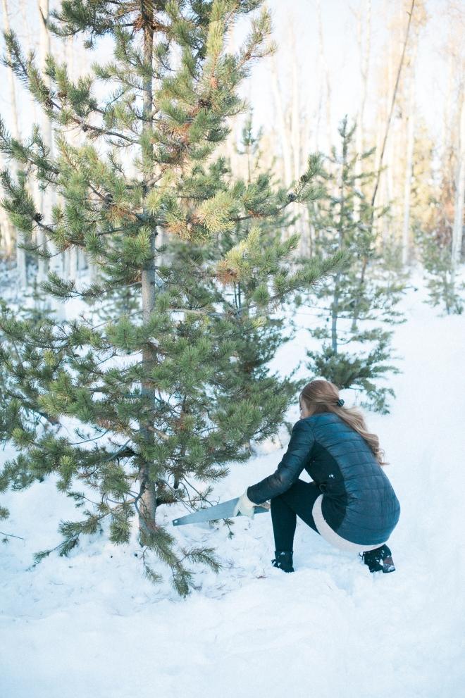 Unitah-Christmas-Tree-Cutting-GabriellaSantosPhotography-WEB-11