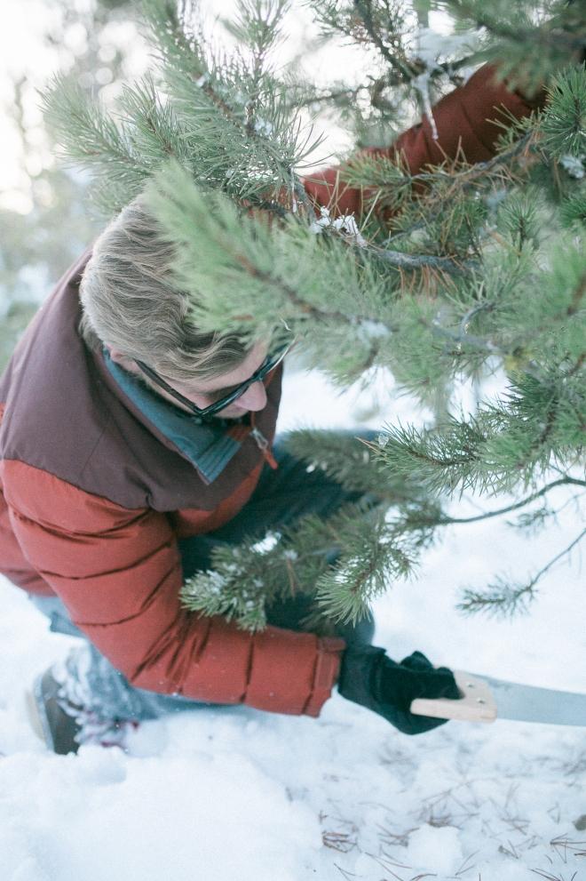 Unitah-Christmas-Tree-Cutting-GabriellaSantosPhotography-WEB-14