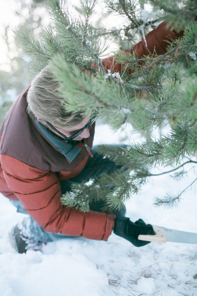 Unitah-Christmas-Tree-Cutting-GabriellaSantosPhotography-WEB-14