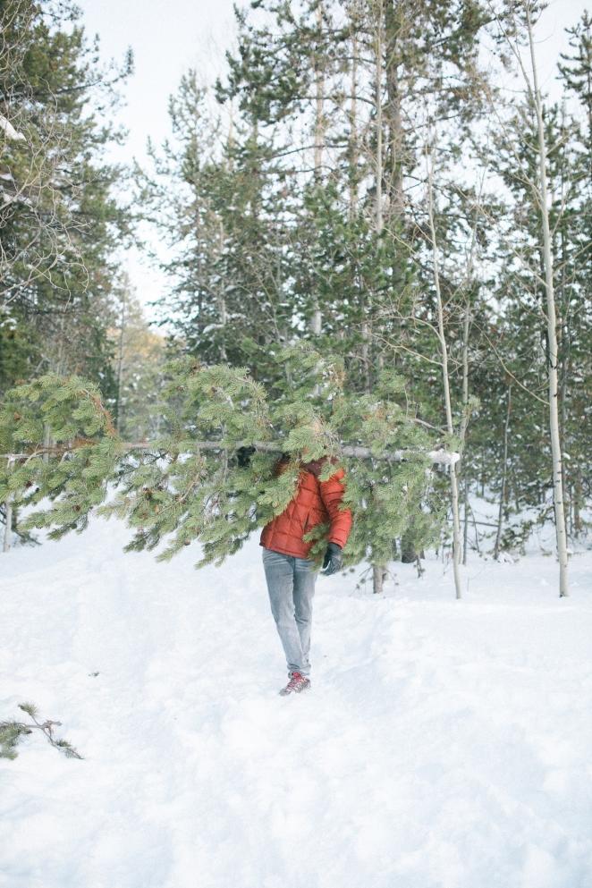 Unitah-Christmas-Tree-Cutting-GabriellaSantosPhotography-WEB-16